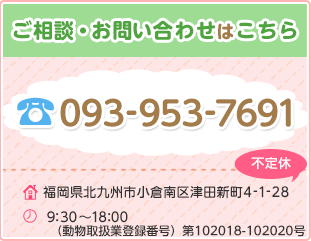 093-953-7691